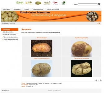 screen capture of the website