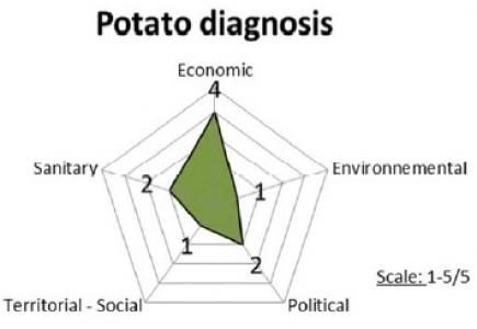 représentation vecteurs d'impact outils diagnostic plant de pomme de terre