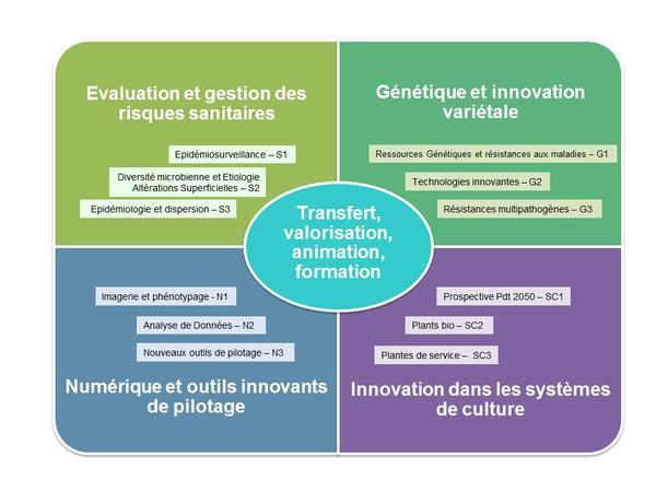schema actions InnoPlant² français